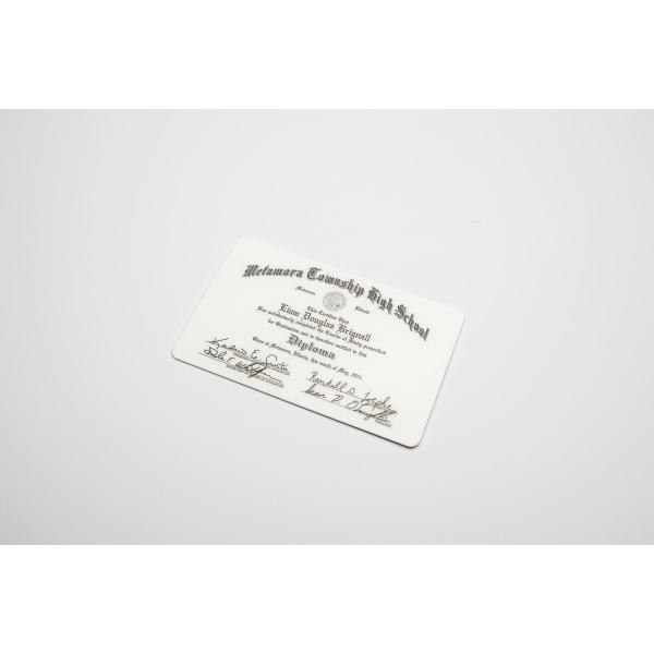 Mini Diploma